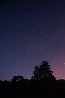 Nature, Night, Silhouette, Sky, Starry, Starry Sky