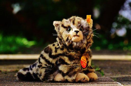 Cat, Stuffed Animal, Cute, Soft Toy, Teddy Bear, Toys