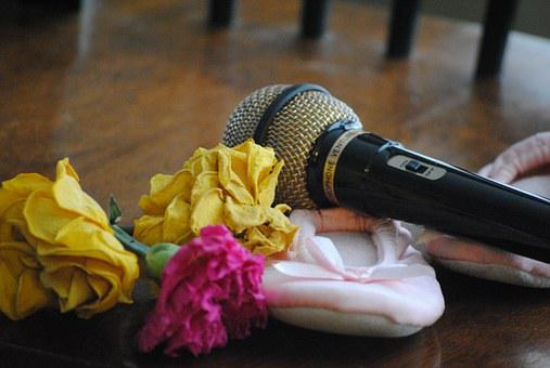 Microphone, Roses, Ballet, Slippers, Dance, Music