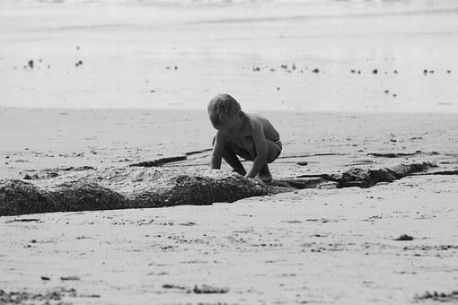 Investigating, Play, Sand, Beach, Discovery