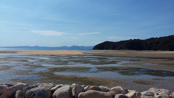 Marahau, Sandy Bay, Beach, New Zealand, Kiwi, Fishing