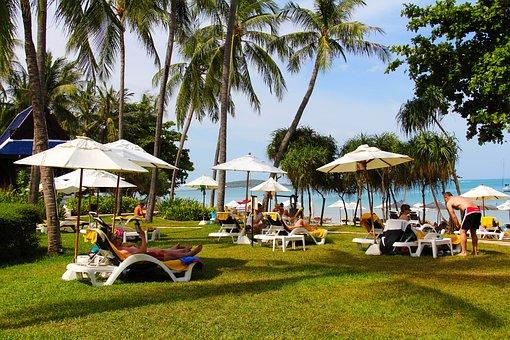 Sea, Spa, Beach, Resort, Seaside, Palm Trees, Relax