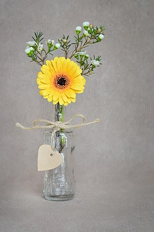 Flower, Gerbera, Yellow, Blossom, Bloom, Yellow Flower
