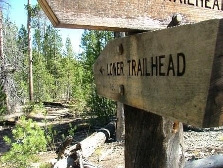 Trail, Sign, Pointer, Directions, Choice, Marker
