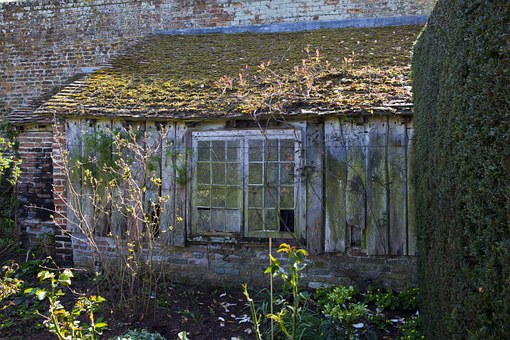 Disused Potting Shed, Lean-to, Broken Windows