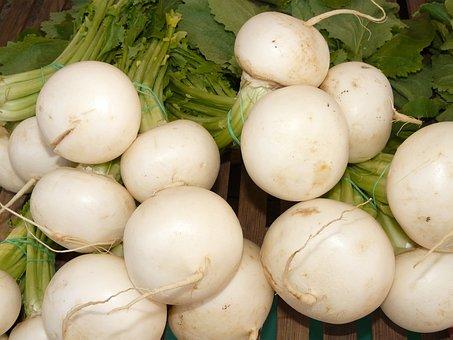 Turnip, Nevett, Vegetable Plant, Speiserübe, Vitamins