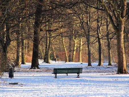 Park, Winter, Tiergarten, Berlin, Bank, Park Bench
