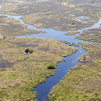 Africa, Oka, Okavango Delta, Wilderness, Botswana