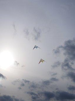 Dragons, Dragon Fly, Kite Flying, Allow Kite Flying