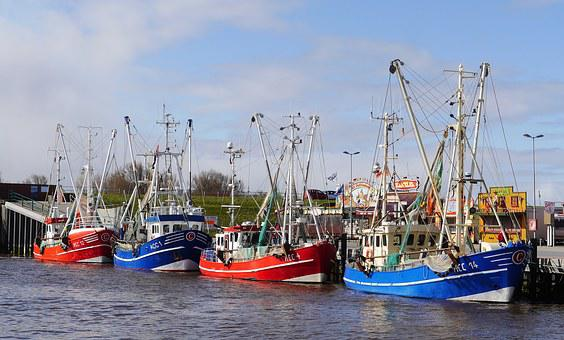 Fishing Vessel, Shrimp, North Sea, East Frisia
