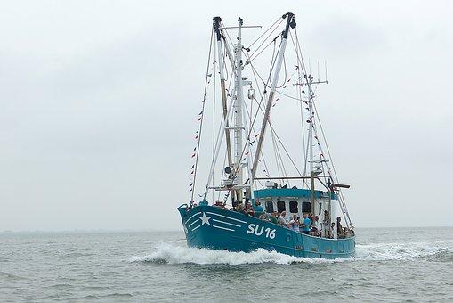 Shrimp, Cutter, North Sea, Husum, Boat Parade, Korso