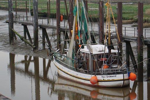 Fishing Vessel, North Sea, Fishing Port, Shrimp