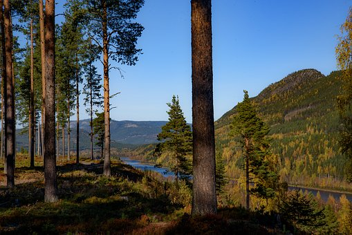 Autumn, Views, Forest, Three, Blue, River, Water