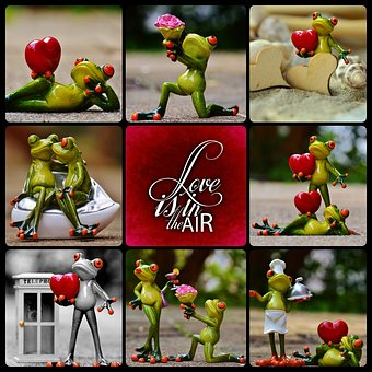 Frog, Love, Valentine's Day, Pose, Heart, Collage