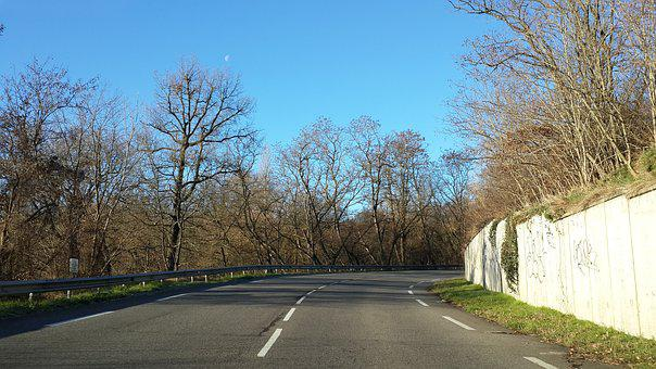Alone, Country Road, Road, Tree, Landscape, Path, Park