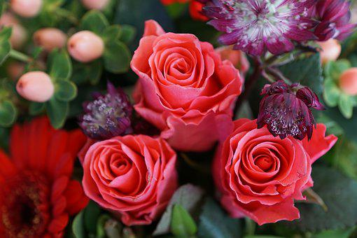 Flowers, Strauss, Green, Roses