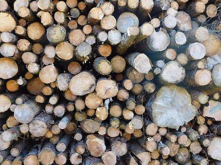 Log, Tree, Lumber, Wood, Industry, Timber, Nature