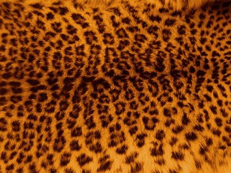 Leopard, Skin, Fur, Pattern, Print, Cat, Textile