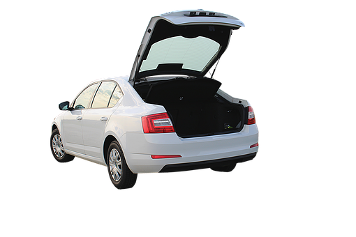Trunk, Automotive, Vehicle, Luggage, Rear, Auto, Tribe