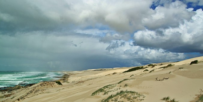 Dunes, Sand Beach, Beach, Coast, Sand, Sea, Nature