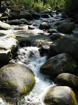Stream, Creek, Water, River, Nature, Landscape, Park