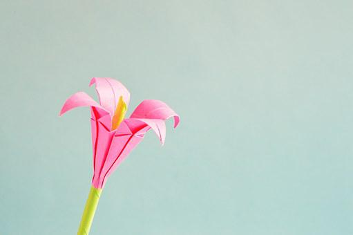 Origami, Flower, Art, Isolated, Decoration, Small
