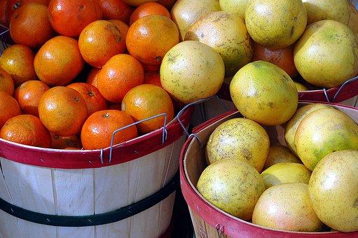 Fruit, Oranges, Grapefruit, Citrus, Food, Orange Fruit