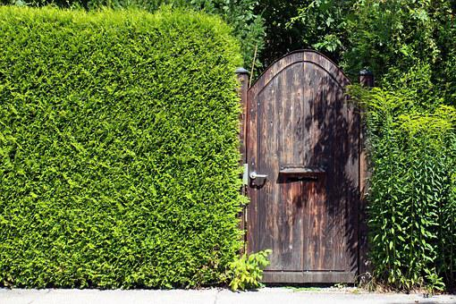 Vision Protection Hedge, Privacy, Hedge, Door, Input