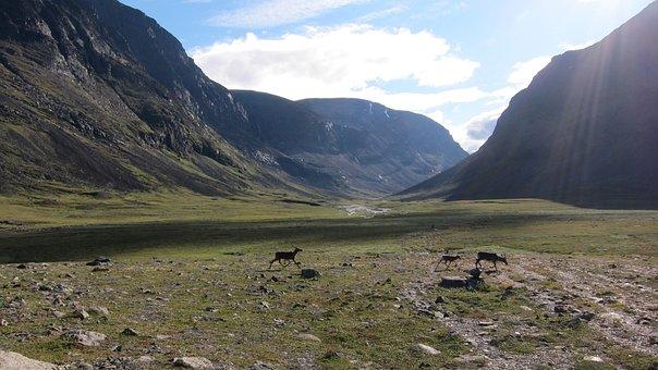 Mountains, Lapland, Sweden, Landscape, Scandinavia