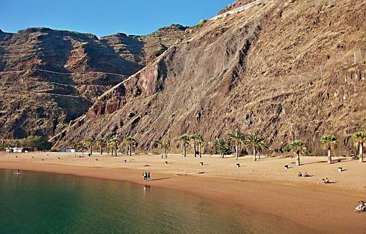Beach, Palm Trees, Tenerife, Atlantic, Teresitas