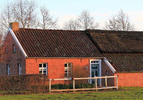 East Frisia, Fehn Home, Agriculture, Livestock, Live