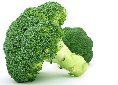 Appetite, Broccoli, Brocoli Broccolli, Calories