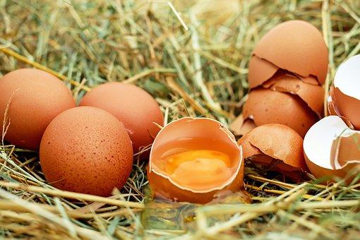 Egg, Chicken Eggs, Raw Eggs, Eggshell, Egg Yolk, Bio