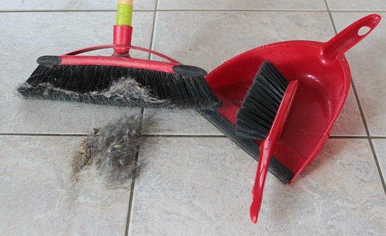 Broom, Hand Brush, Blade, Return, Fluff, Hair, Dirty