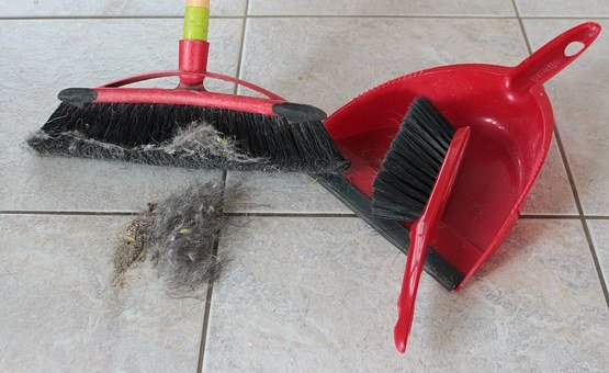 Broom, Hand Brush, Blade, Return, Fluff, Hair, Dirty