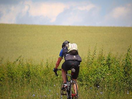 Cyclists, Uphill, Training, Cycling, Bike, Tour, Nature