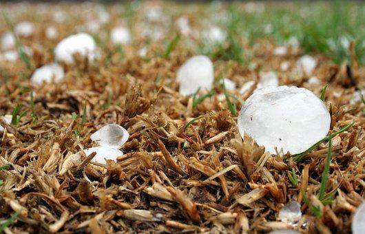 Hailstone, Storm, Highveld, South Africa, Hail