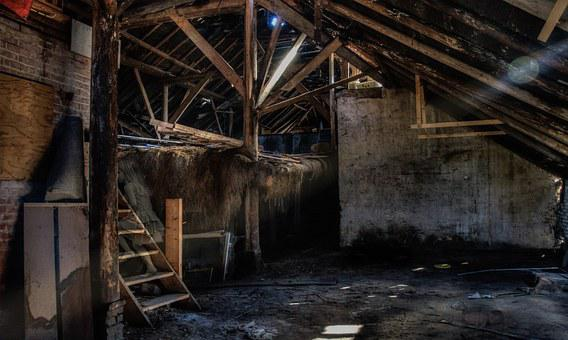 Girl, Lost, Barn, Ghost, Old, Town, Abandoned, Historic