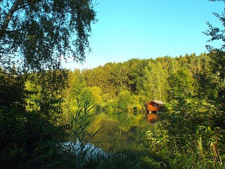 Pond, Fish Pond, Summer, Oberschönenfeld