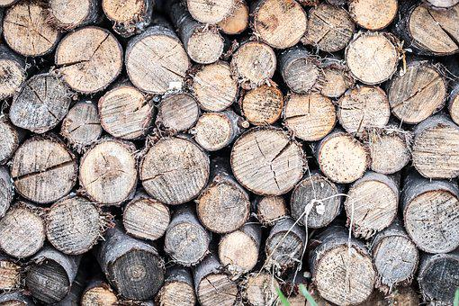 Tree, Logs, Background, Pile, Round, Circles, Cut, Hack