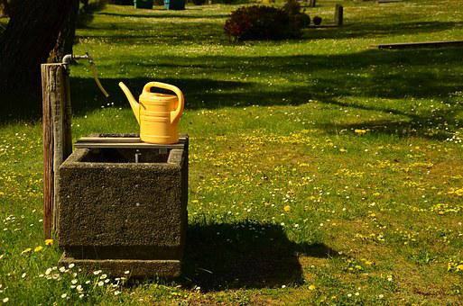 Watering Hole, Cemetery, Fountain, Meadow, Watering Can