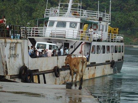 Passengers, Ferry Boat, Regular Services, Bay