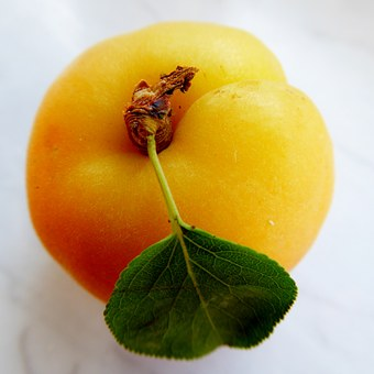 Apricot, Leaf, Fruit, Tender, Vitamins, Frisch, Sweet