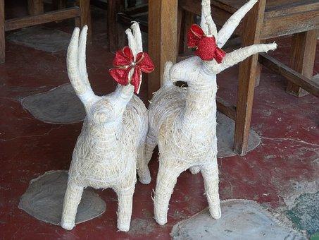 Christmas, Reindeer, Holiday, Decoration, Costa Rica
