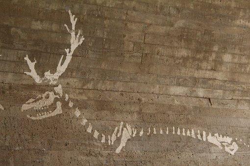Rovaniemi, Finland, Skeleton, Reindeer, Graffiti