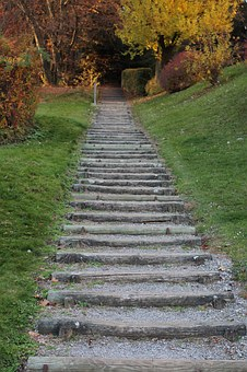 Away, Stairs, Gradually, Staircase, Upward, Forest