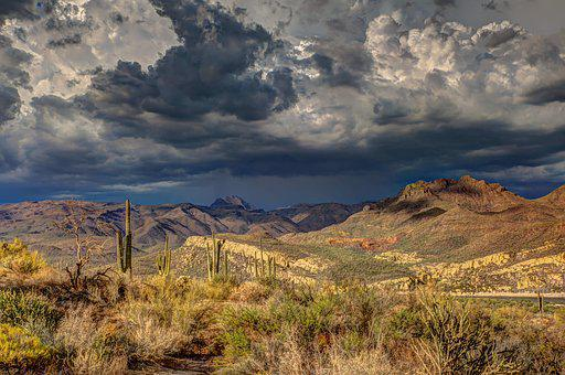 Arid, Cactus, Cloud Formation, Dark Clouds, Daylight