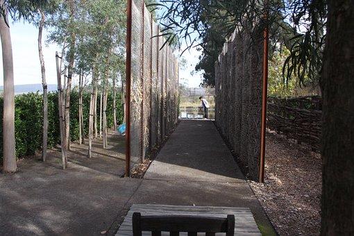 Trees, Distance, Landscape, Long Shot, Bench, Outdoor