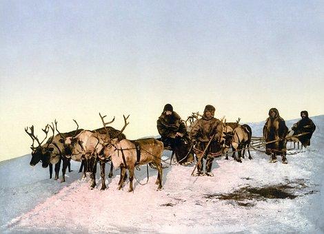 Reindeer, Slide, Reindeer Sleigh, Eskimos, Photochrom
