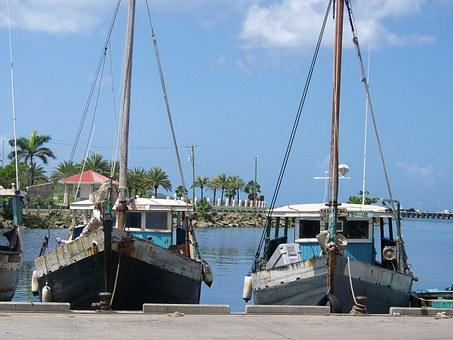 Boats, Sea, Water, Bay, Fishing Boat, Peer, Docks, Port